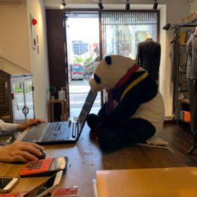 WechatIMG174 280x280 - 京都店『パンダ』雇いました。