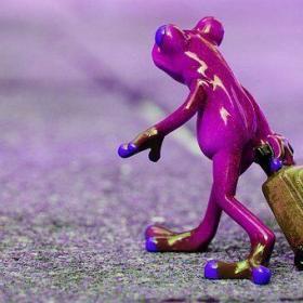 frog 1254647 340 280x280 - 勤め先が脱スーツになったら紫のスーツで出社しなさい